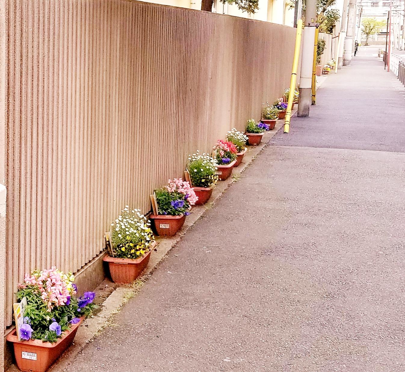 写真・図版 : 子どもたちを待ち続けた花も枯れ始めた