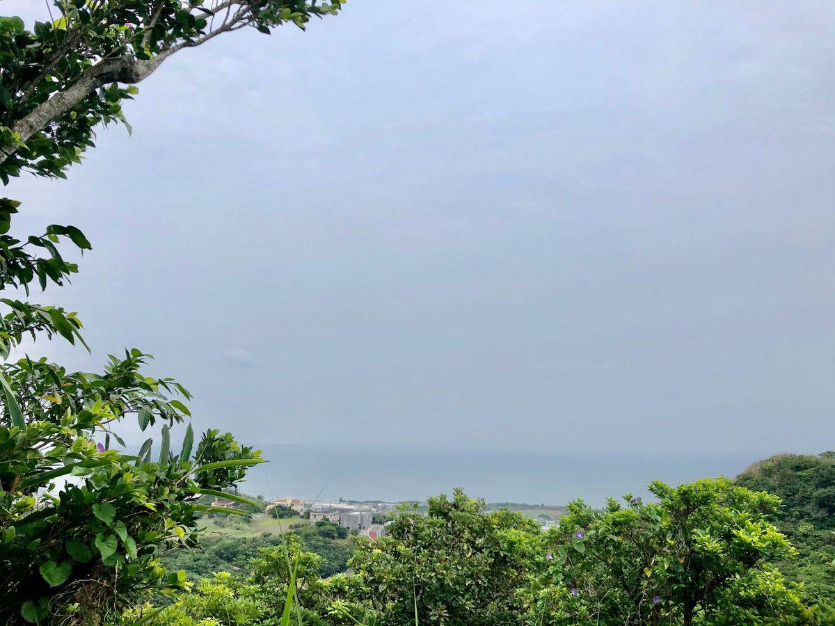 写真・図版 : 中城湾=2020年4月23日(山本章子撮影)