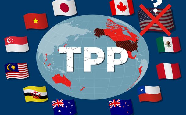 WTOは機能不全、TPPに米中を引き込め