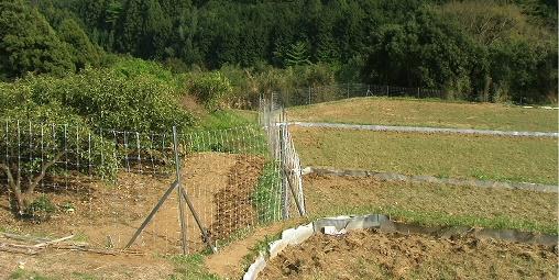 写真・図版 : 農地や植林地を守る防護柵。しかし、これだけで共存は難しい。人間の生活圏を囲むような緩衝帯の整備や個体数調整などと合わせて、新たな棲み分けの線引きが必要だ=神奈川県山北町、筆者撮影