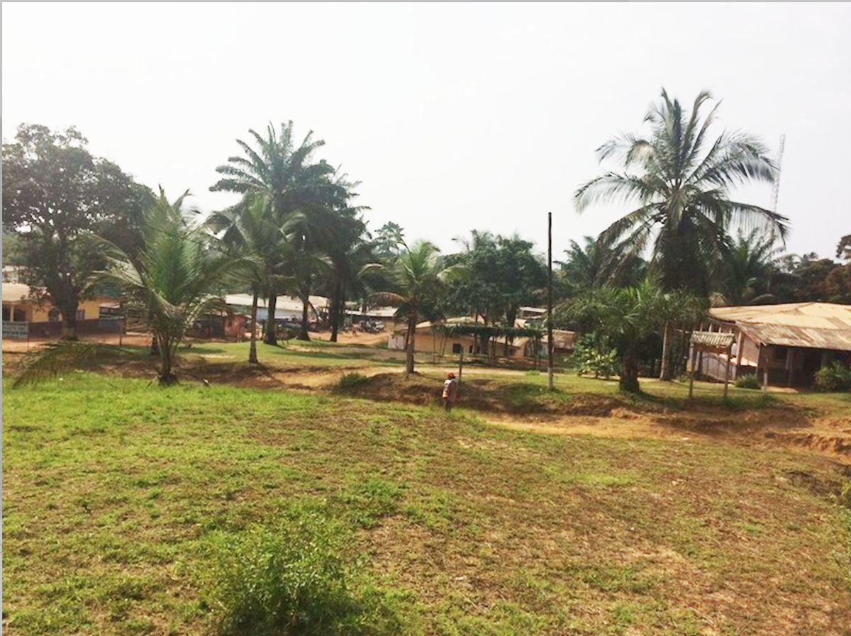 写真・図版 : カメルーン、ルネさんの地元の村の風景。(星野ルネさん提供)