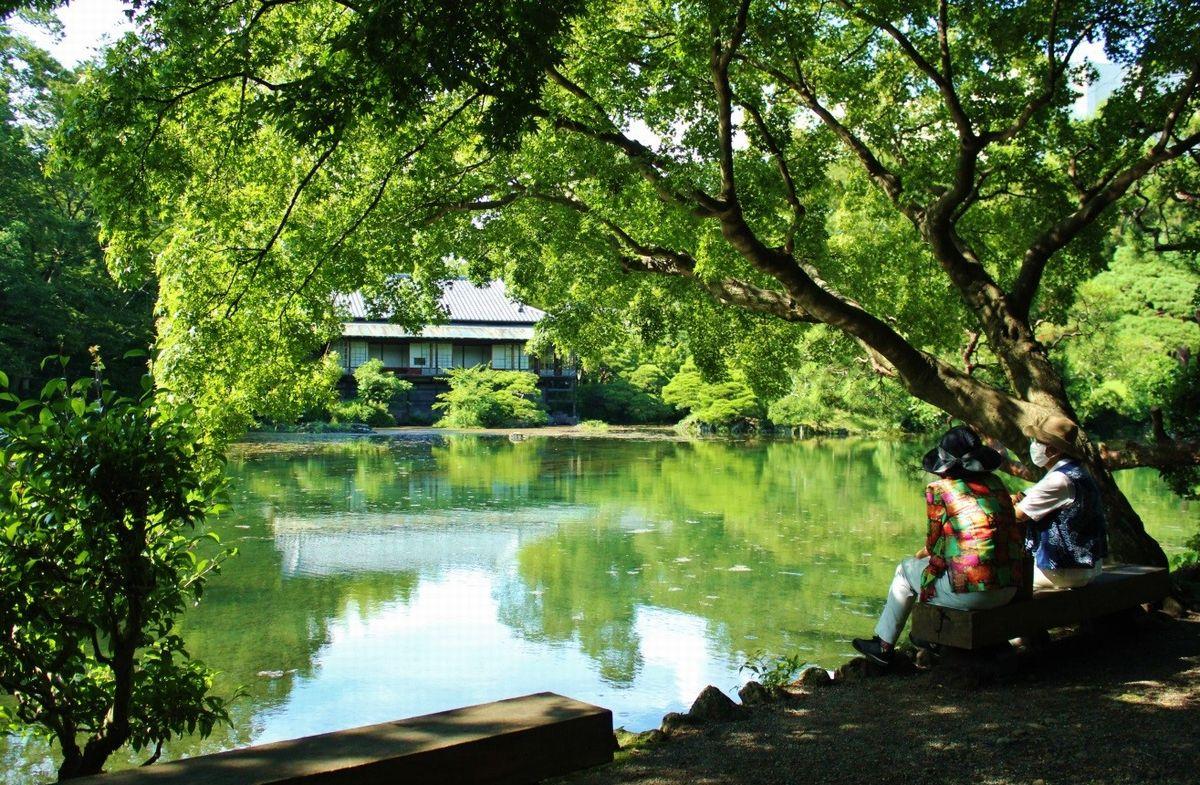 写真・図版 : 9年ぶりに満水となった楽寿園の小浜池(筆者撮影)