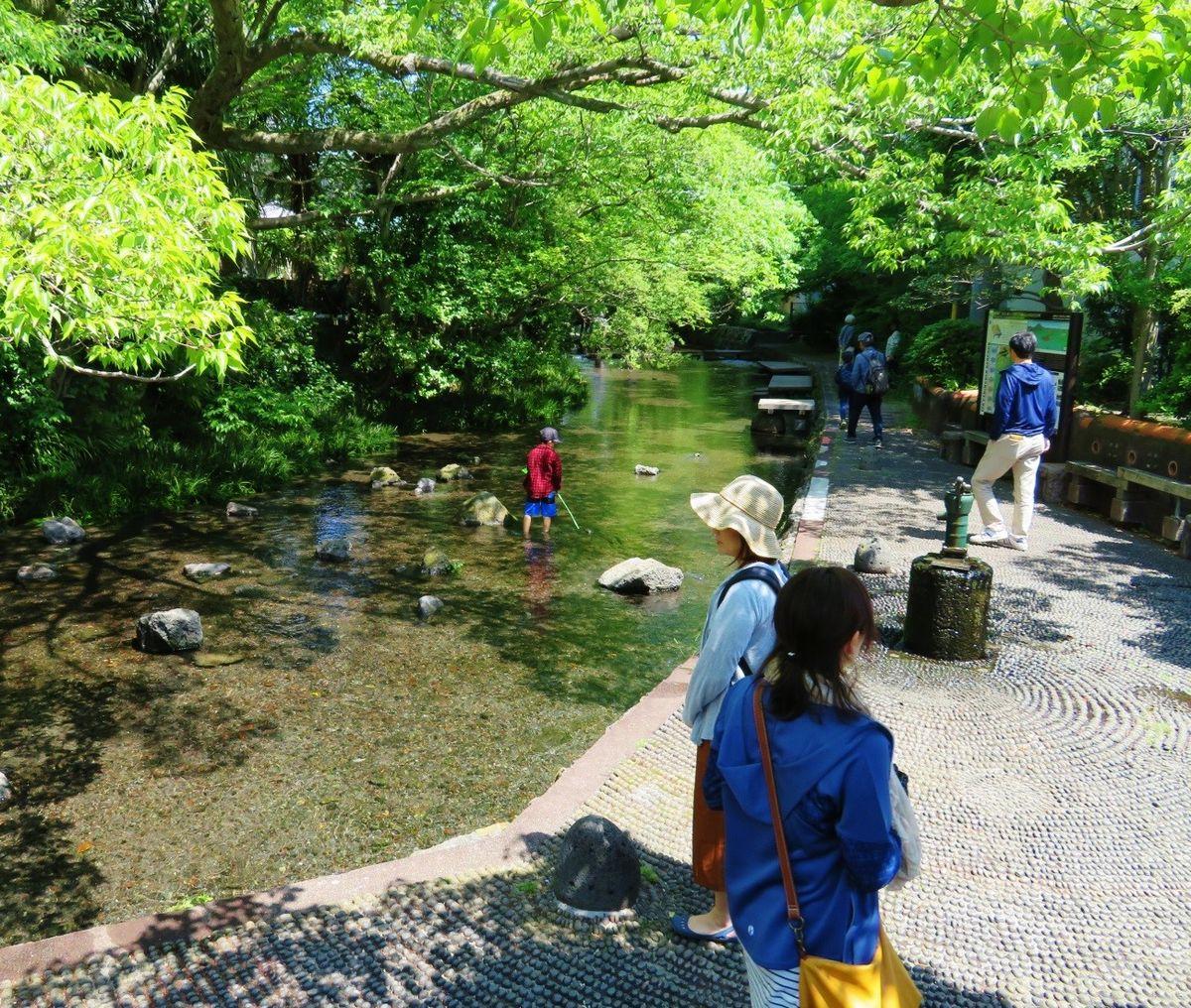 写真・図版 : 川幅が広くなり、水遊びにぴったりの一角。いつも親子連れなどでにぎわう(2018年、筆者撮影)