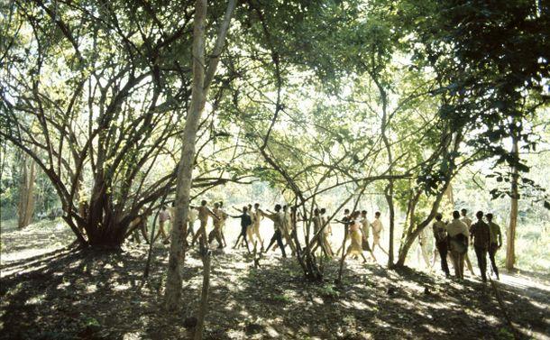 写真・図版 : 1973年4月、小農を主体とする「モザンビーク解放戦線(フレリモ)」が、タンザニア国境を越えて、モザンビークの森にある「解放区」で訓練するところ(小川忠博氏提供)