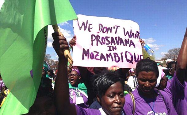 日本の援助史に残る「失敗」/アフリカ小農が反対する「プロサバンナ事業」中止へ(上)