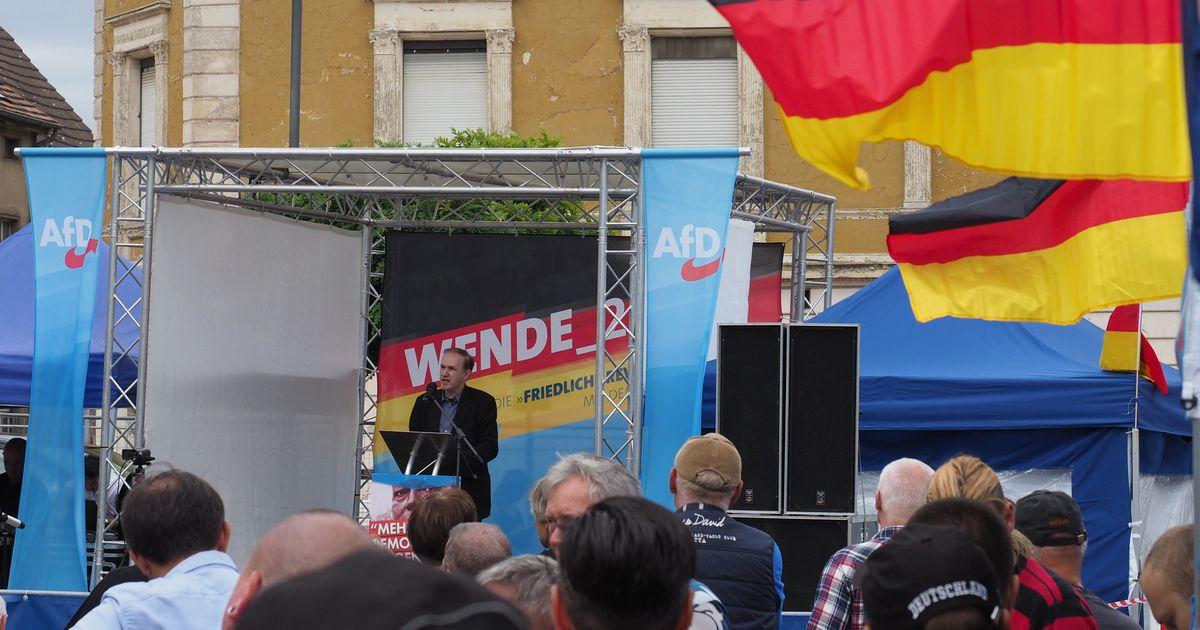 写真・図版 : 新興右翼政党「ドイツのための選択肢(AfD)」の選挙集会。多くのドイツ国旗がはためいた=2019年8月、ドイツ東部ブランデンブルク。朝日新聞社
