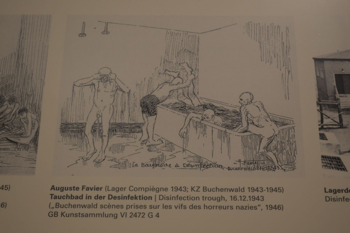 写真・図版 : 生存者が描いた、強制収容所で髪の毛を剃られ風呂に押し込まれる人たちの様子