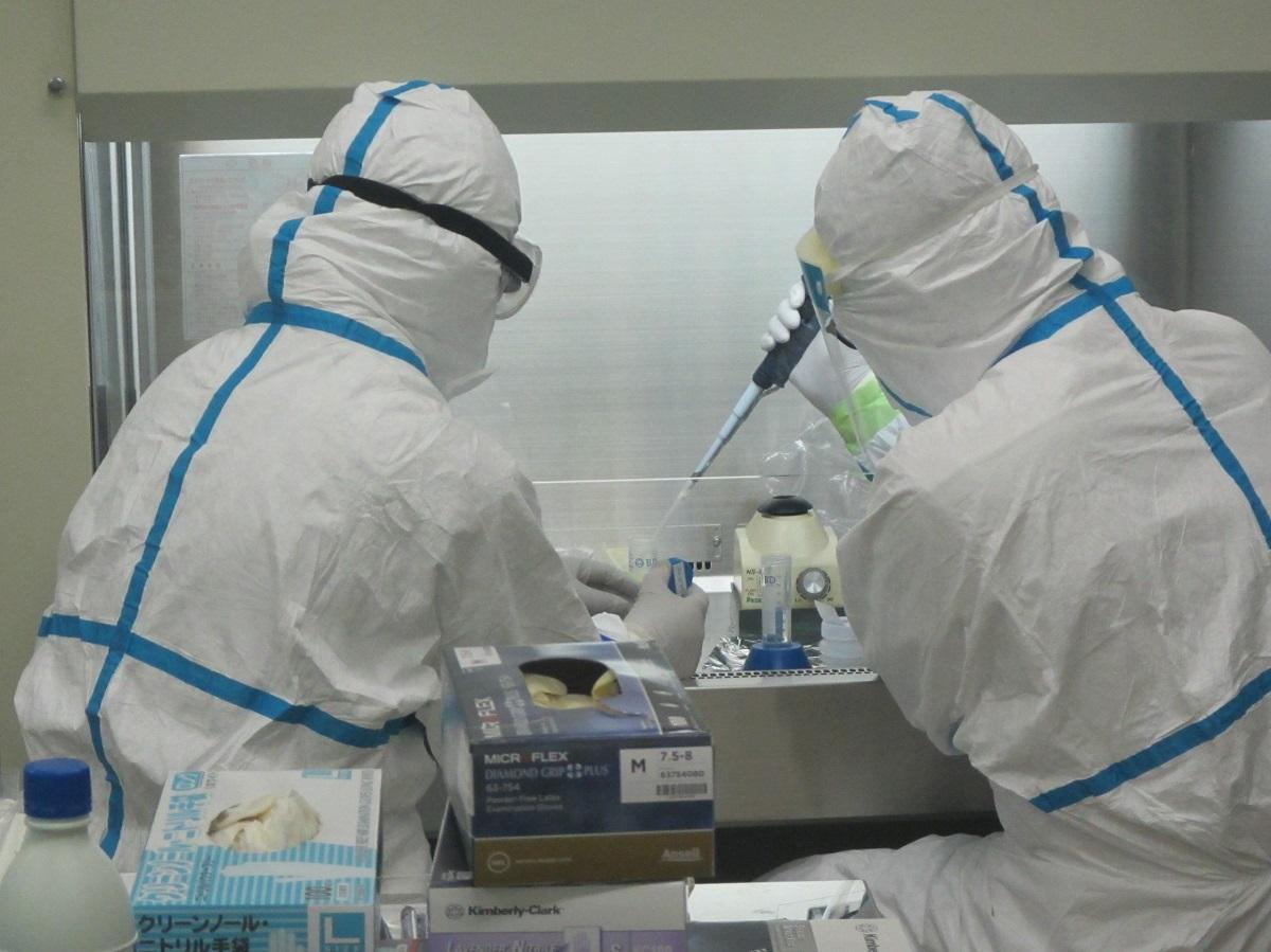 写真・図版 : PCR検査の様子