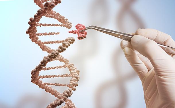 ヒト受精卵のゲノム編集、問題を示唆する研究相次ぐ