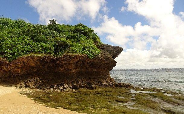 那覇軍港の浦添移転で失われる沖縄の原風景
