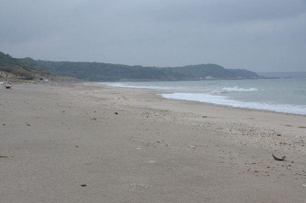 写真・図版 : 自衛隊の訓練が行われた中種子町の長浜海岸=2020年9月24日、鹿児島県中種子町