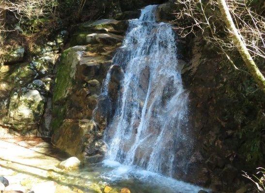 写真・図版 : 男滝