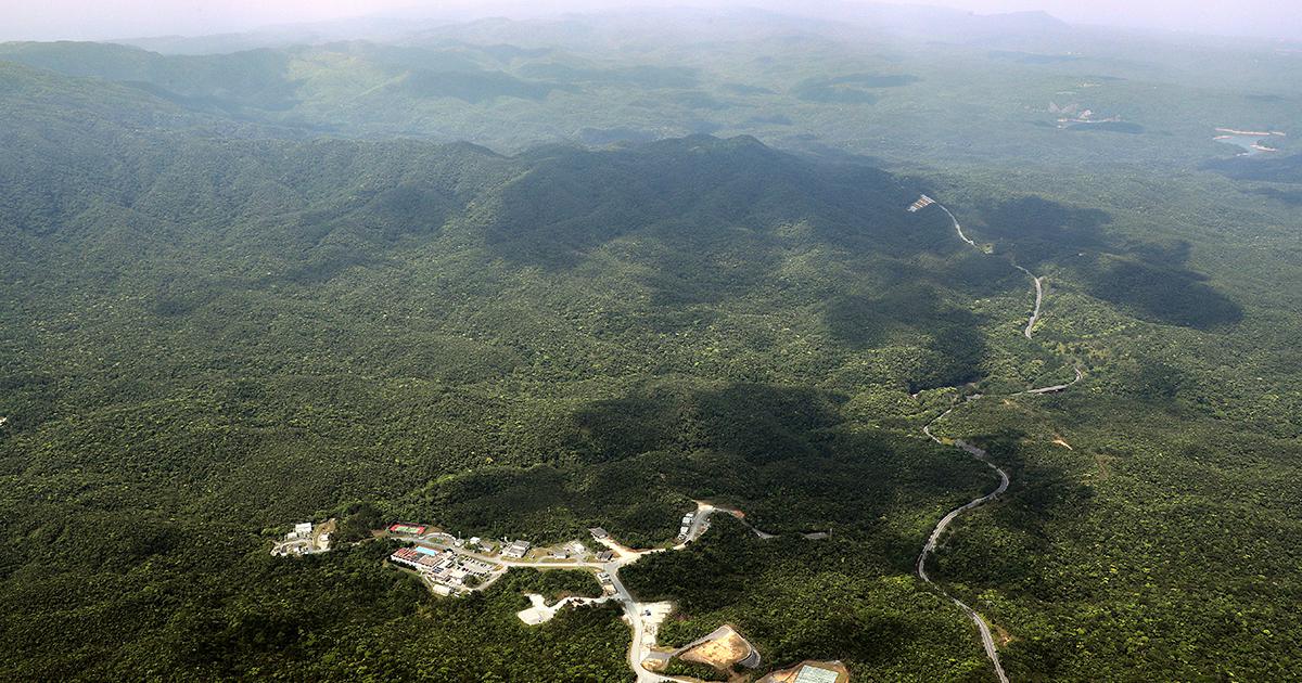 写真・図版 : 沖縄本島北部のやんばるの森。手前は米軍北部訓練場=2018年4月19日、堀英治撮影