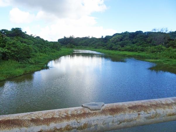 写真・図版 : 石垣島民の水源の宮良川