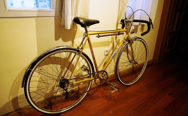 写真・図版 : 移動に使うようになった自転車=〓月〓日、 ERIKO撮影
