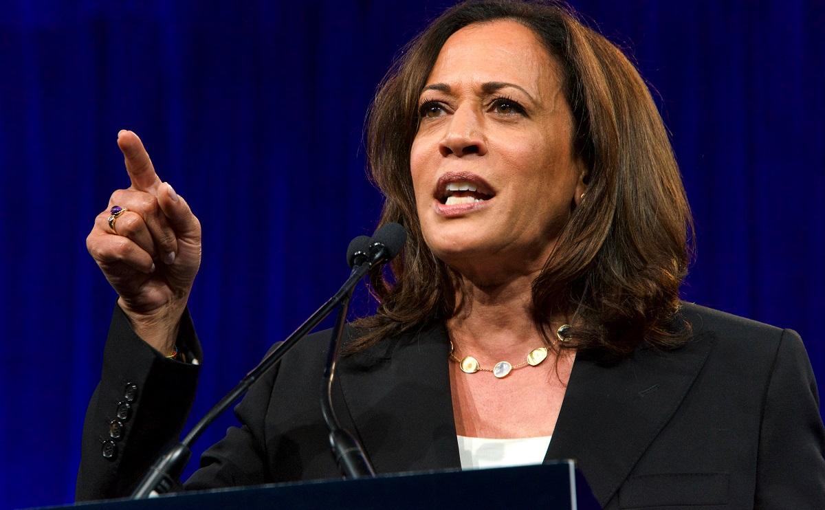 「女性初の」「黒人初の」という肩書きがこれまでも多かったカマラ・ハリス氏 Sheila Fitzgerald/Shutterstock.com