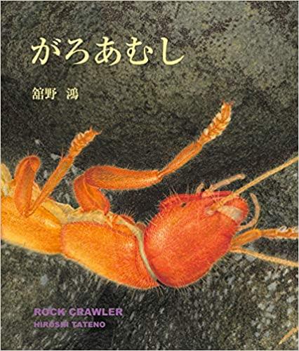 舘野鴻の大型絵本『がろあむし』(偕成社)