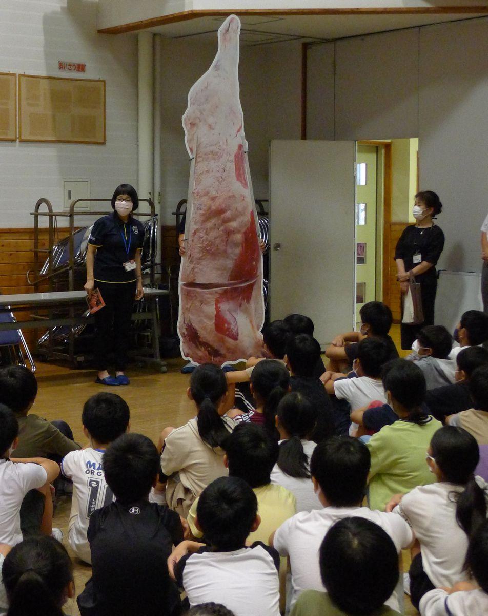 実寸大の枝肉パネルで、給食に出される鳥取和牛の説明があった=2020年9月18日、鳥取市立川町7丁目