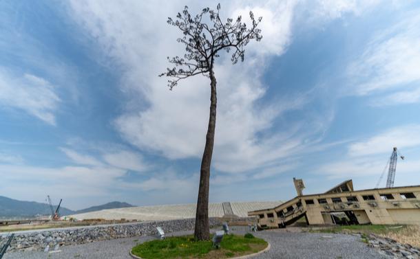 東日本大震災から10年 日本はリスク管理をどれだけ学んだのか?