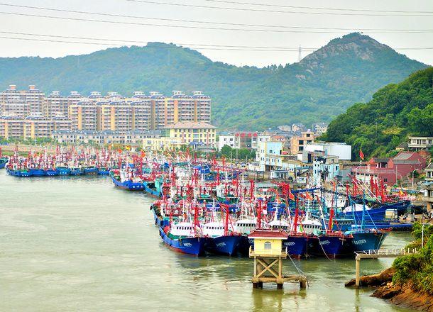写真・図版 : 石浦港に停泊する漁船。16日に約1千隻が東シナ海に向け、一斉に出港する=2017年9月7日、浙江省象山県