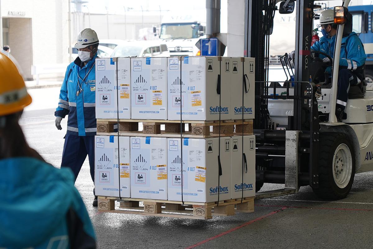 写真・図版 : 日本に到着し、仕分けされるファイザー社製のワクチン=2021年3月1日、成田空港