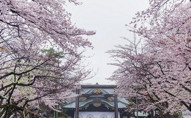 最高裁「孔子廟」違憲判決と靖国神社