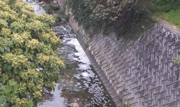 写真・図版 : 河川には、基地内から流れ出たと見られる泡が残っていた=2020年4月、沖縄県宜野湾市