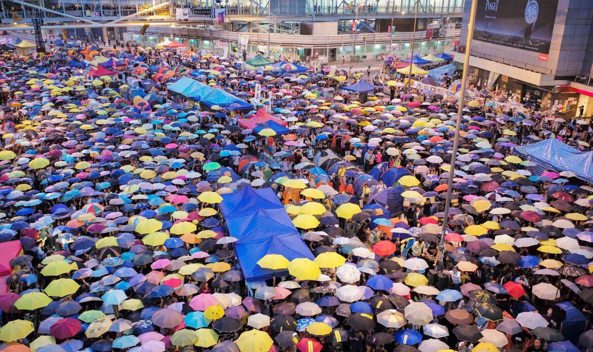 写真・図版 : 2014年の雨傘運動。民主派学生ら大勢の市民が路上で傘を広げ、香港政府に抗議した=香港・金鐘