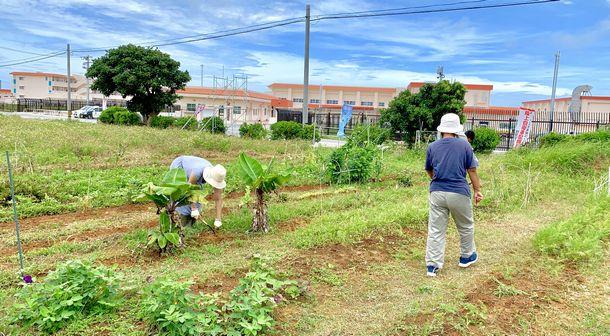 写真・図版 : 2019年3月に開設された陸上自衛隊宮古島駐屯地。翌年までにミサイル部隊の配備が完了した。周辺には農地や民家が散在。基地建設反対ののぼりがみられた=2019年6月、沖縄県宮古島市、筆者撮影