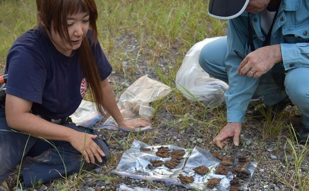 沖縄県警は、なぜチョウ類研究者宅を家宅捜索したのか