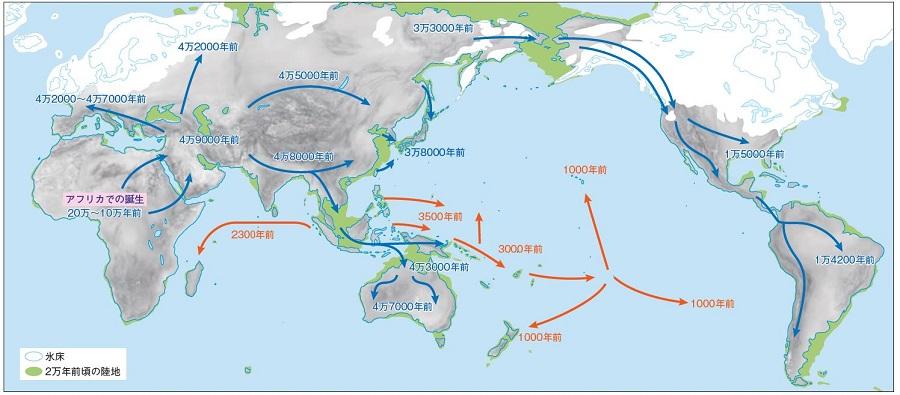 写真・図版 : アフリカで誕生したホモ・サピエンスが世界へ拡散した推定経路。世界中の現代人はこの歴史を通じて互いにつながっている=海部陽介著『サピエンス日本上陸』(講談社)より