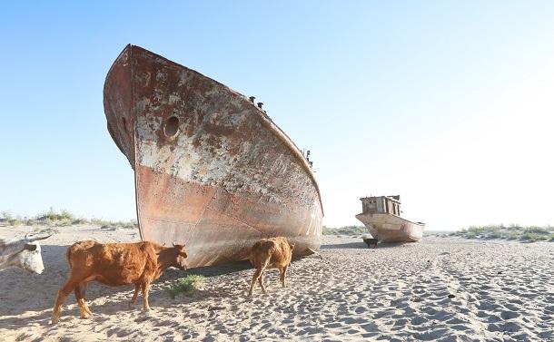 写真・図版 : かつてアラル海の湖底だった地面に取り残された廃船=2018年5月2日、ウズベキスタン・ムイナク