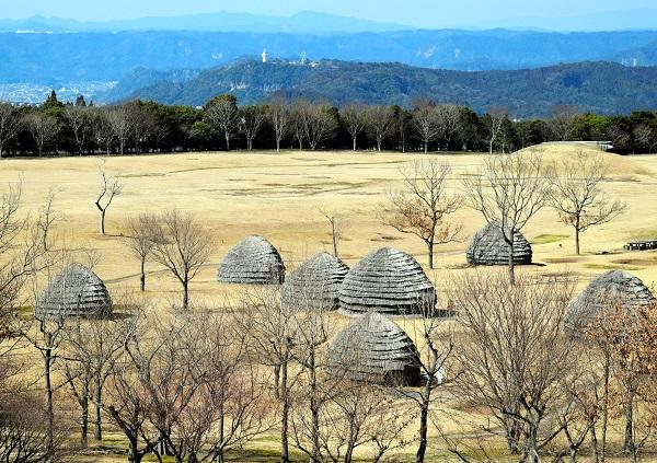 写真・図版 : 復元された上野原移籍の住居と集落=2016年3月、鹿児島県霧島市の上野原縄文の森