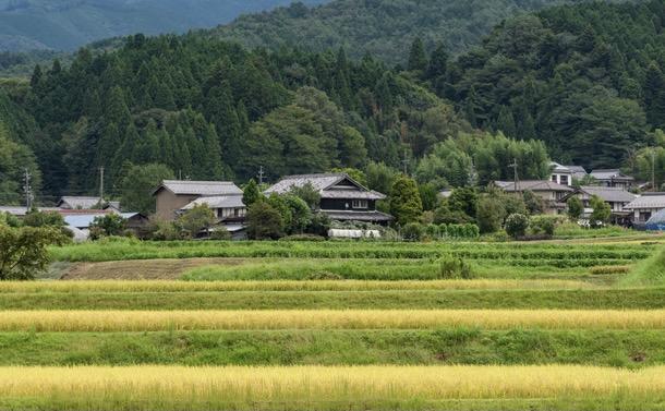 豊かな森林を残した日本の「文明の形」