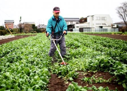 震災で変わるか農業